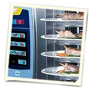 Банкетная система для регенерации блюд